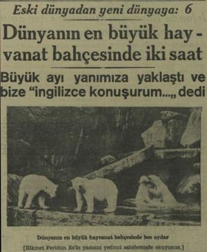 """Eski dünyadan yenı dunyaya 6 Dünyanın en büyük hay vanat bahçesinde iki saat Büyük ayı yanımıza yaklaştı ve ize """"ingilizce"""