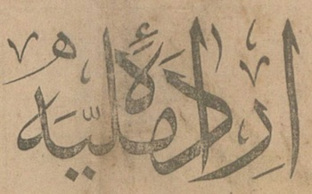İrade-i Milliye (Sivas) Logosu
