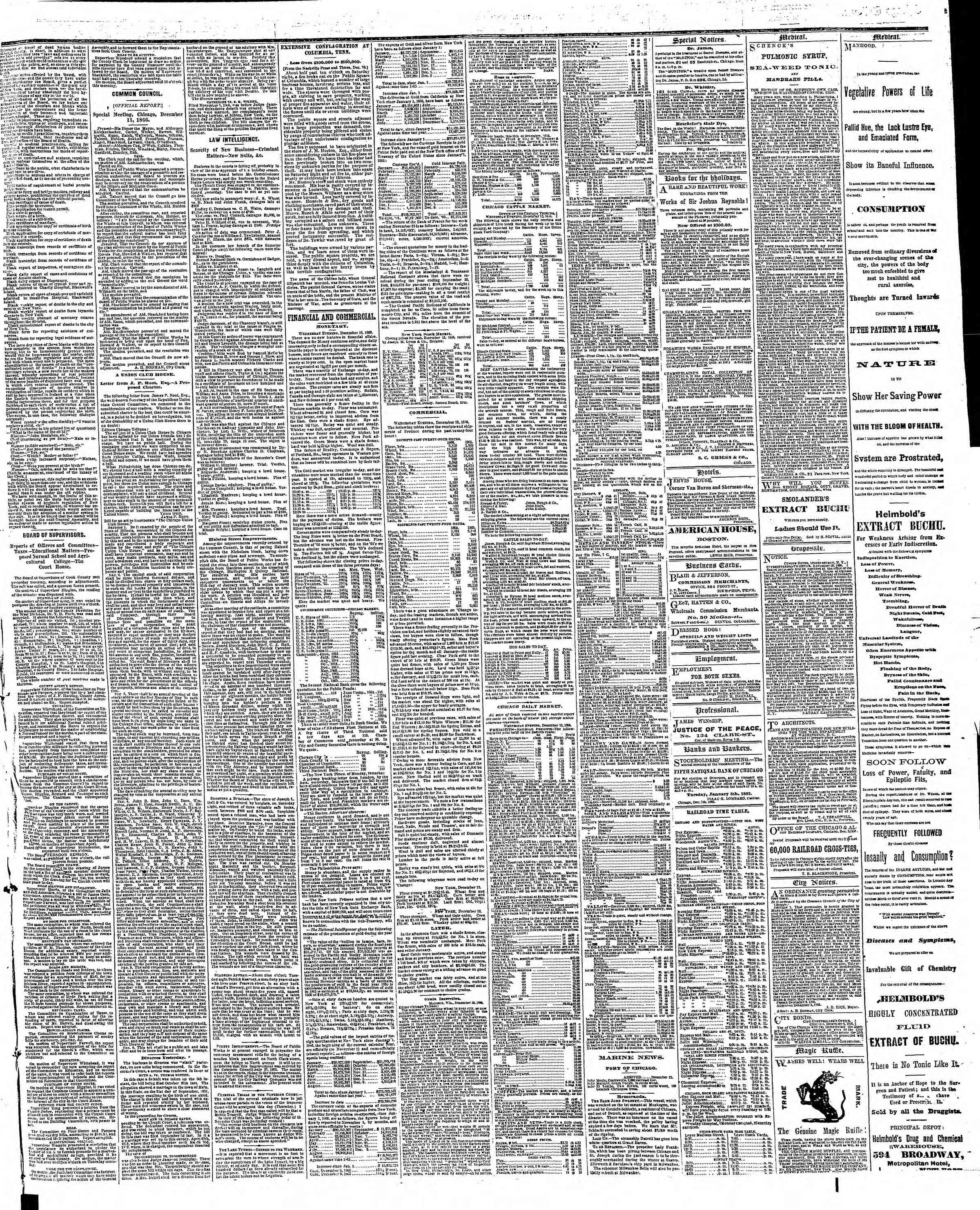 Newspaper of The Chicago Tribune dated December 13, 1866 Page 3