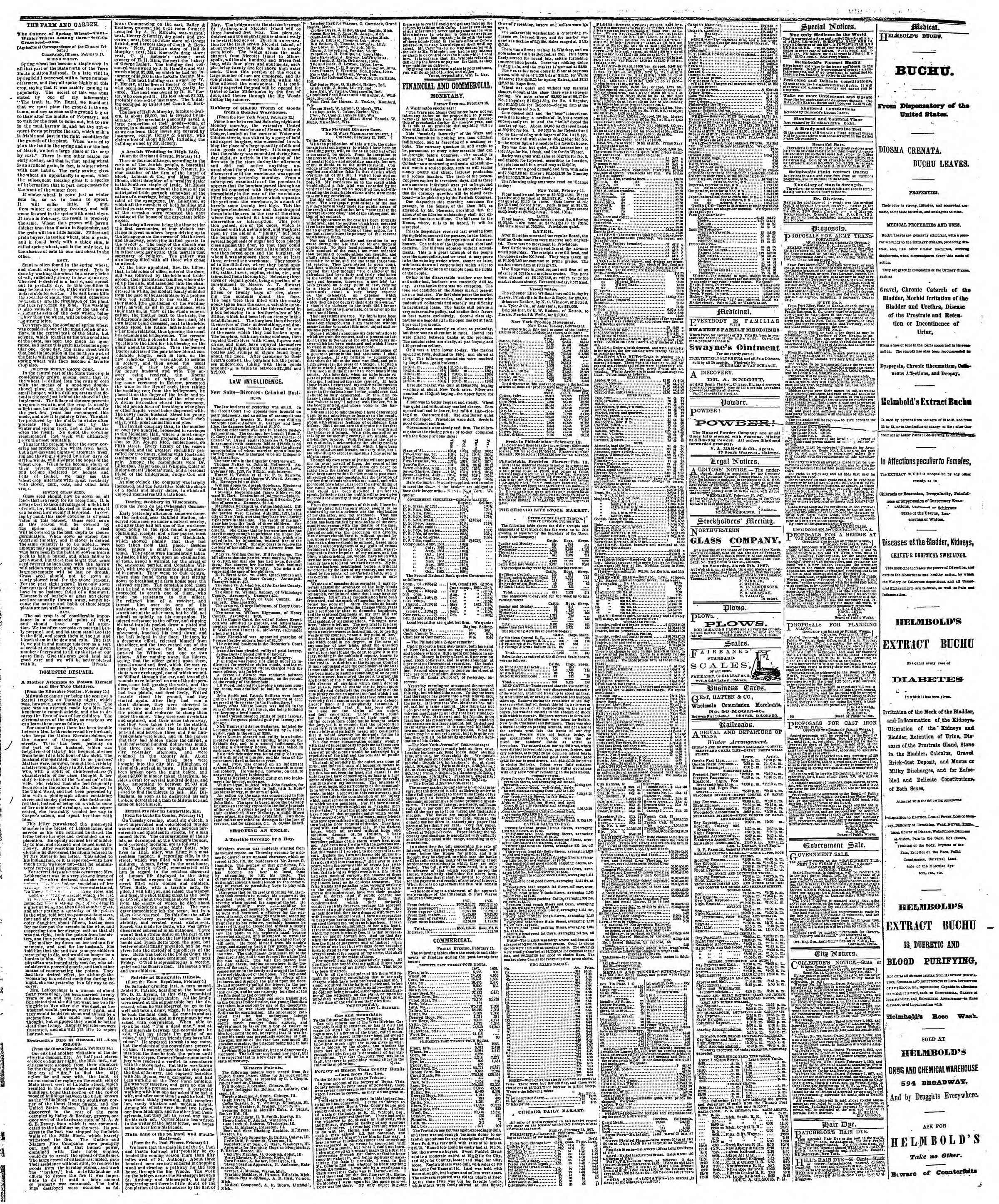 Newspaper of The Chicago Tribune dated February 16, 1867 Page 3