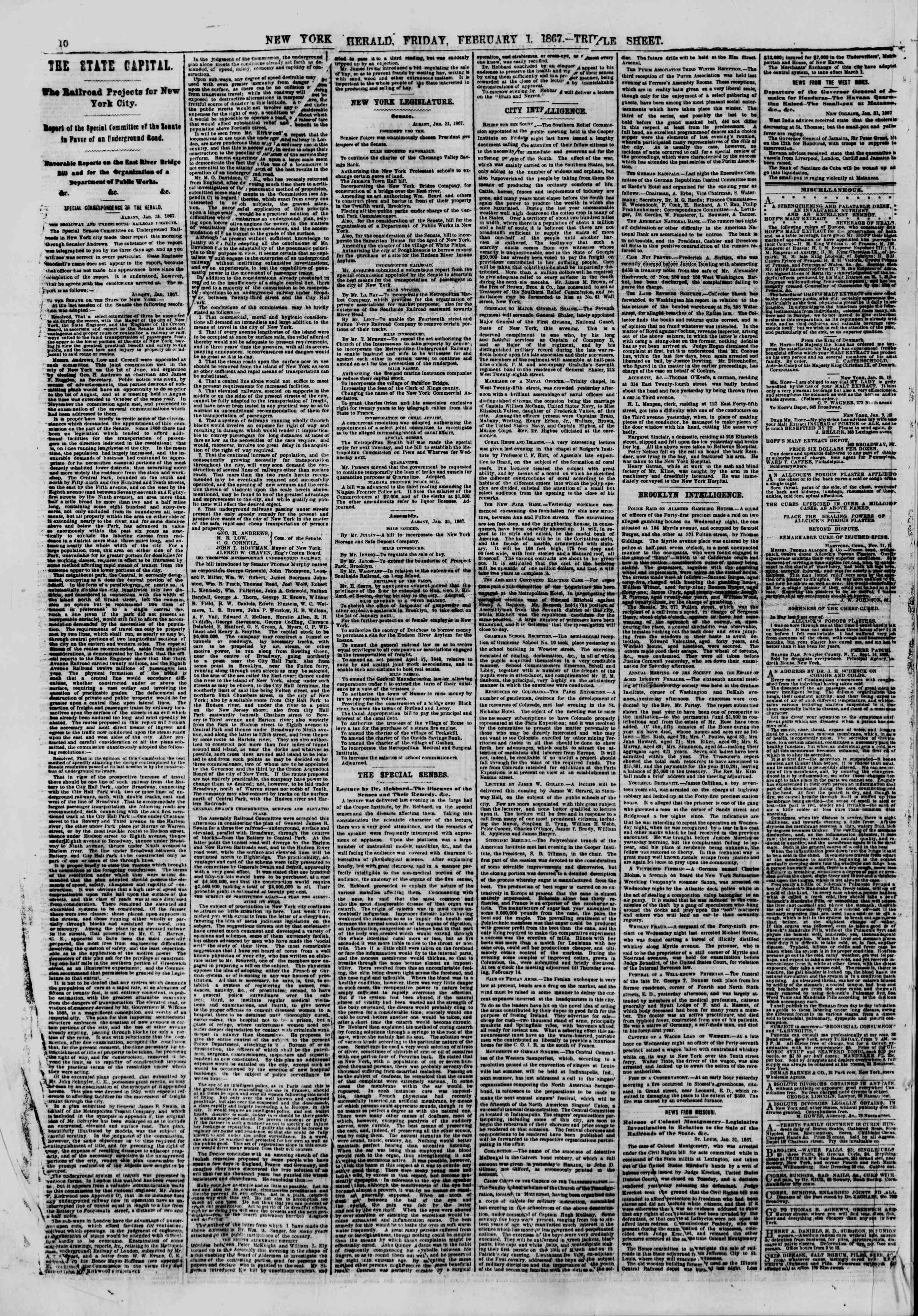 Newspaper of The New York Herald dated February 1, 1867 Page 10