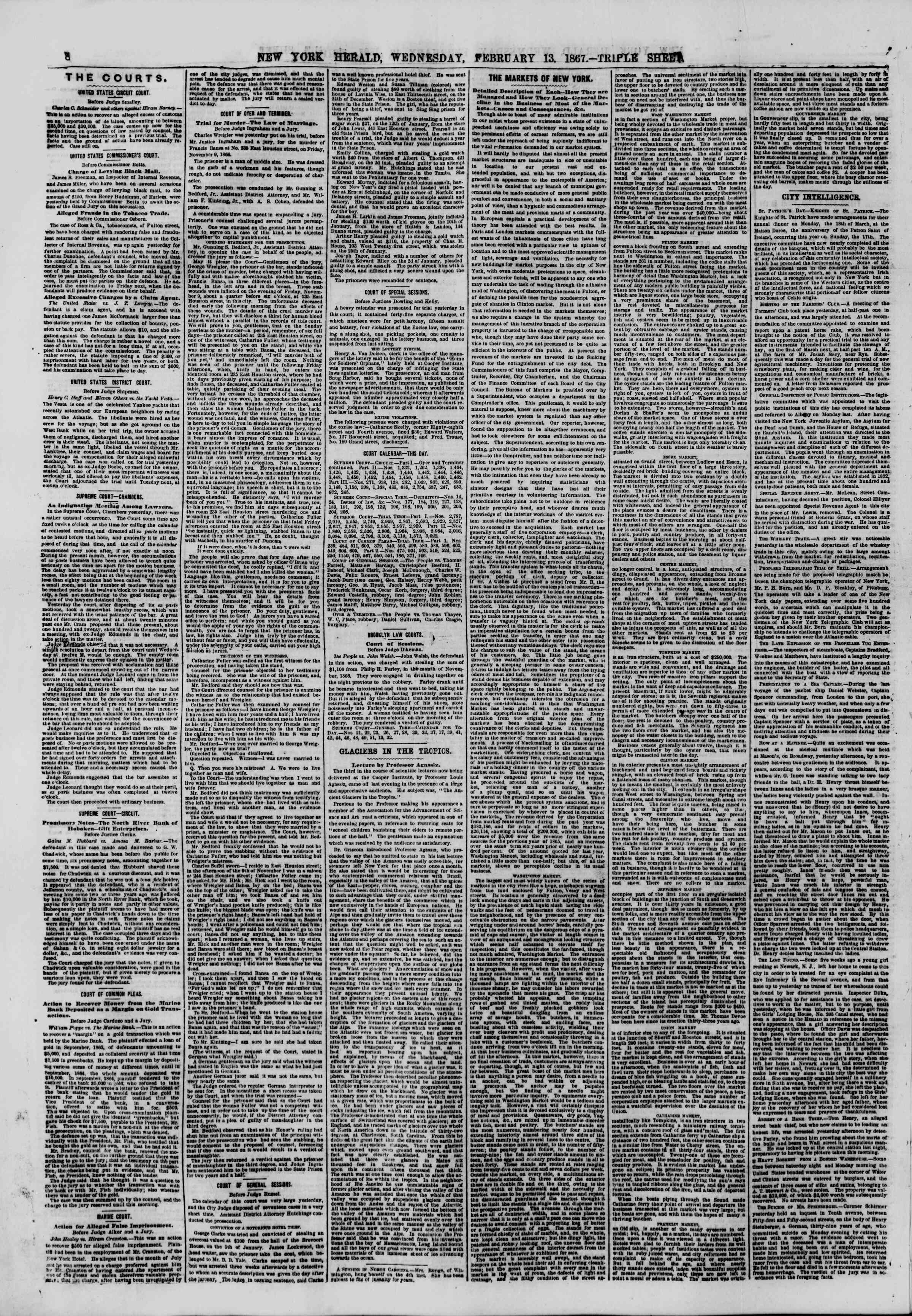 Newspaper of The New York Herald dated February 13, 1867 Page 8