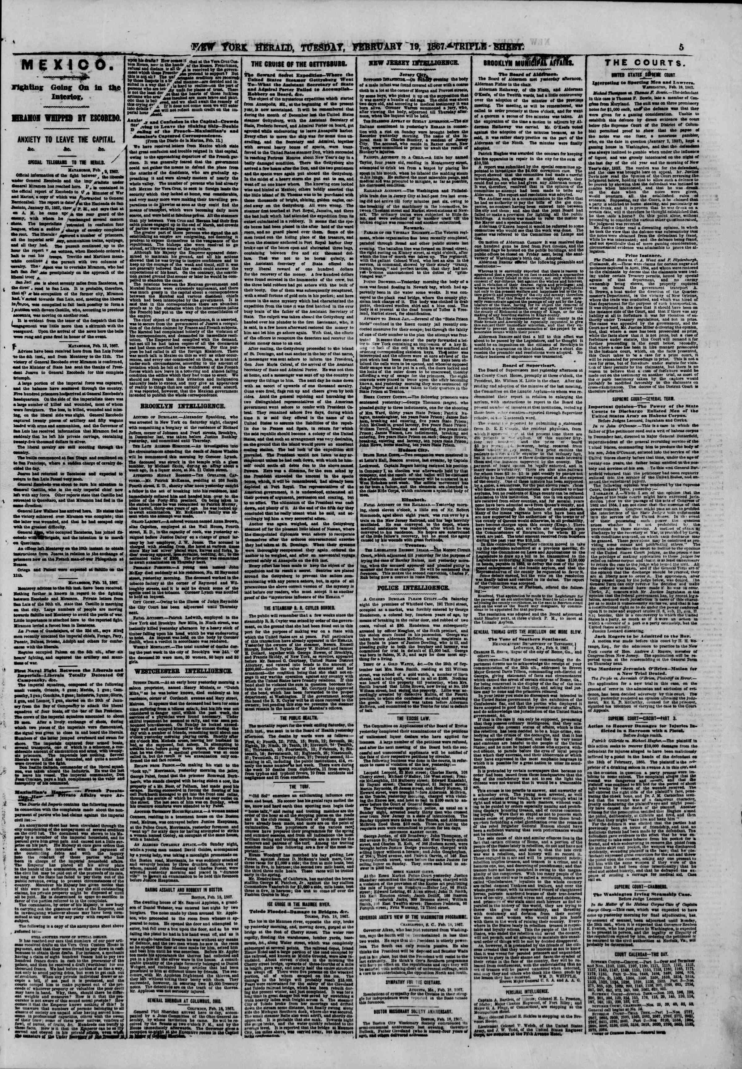 Newspaper of The New York Herald dated February 19, 1867 Page 5