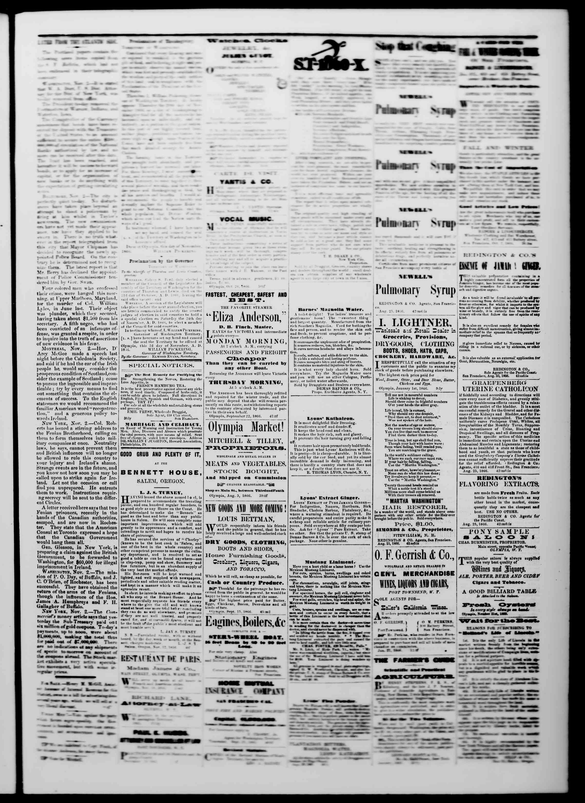 Newspaper of The Washington Standard dated November 24, 1866 Page 3