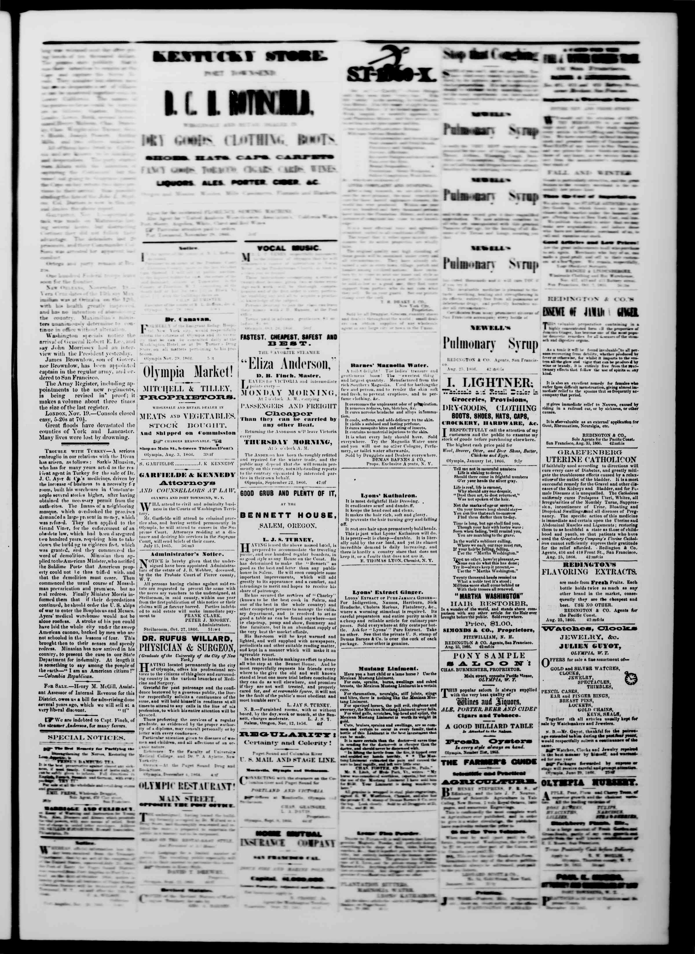 Newspaper of The Washington Standard dated December 1, 1866 Page 3
