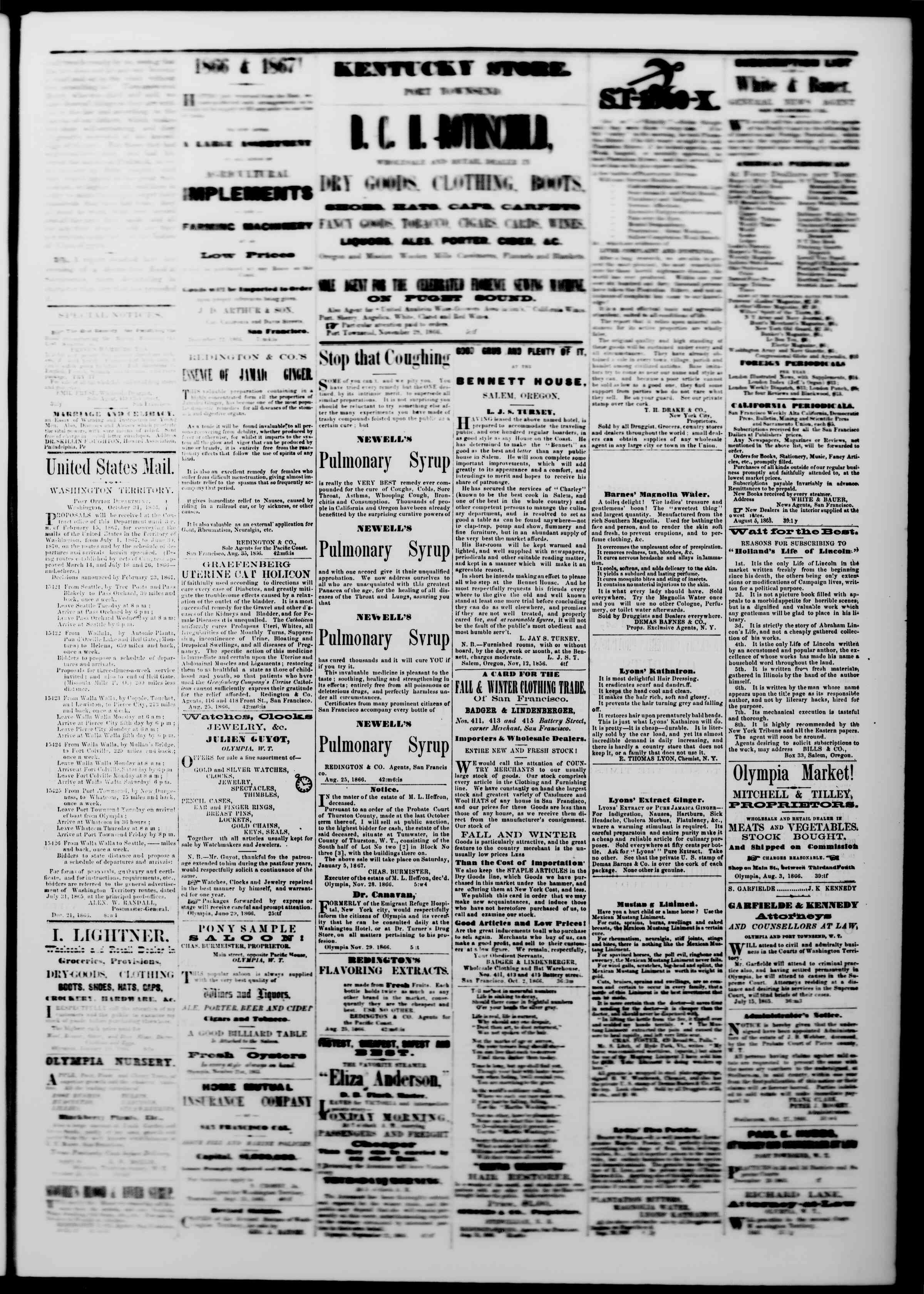 Newspaper of The Washington Standard dated December 29, 1866 Page 3