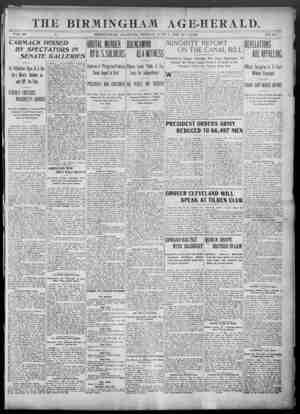 Birmingham Age Herald Gazetesi 1 Haziran 1902 kapağı