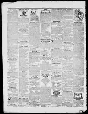 Dli. TAYLOR'S BALSAM OF LIVERWORT. Piticc REovtcti Large Mottles 61,50! Small, 81. Dlt. TAVI.OIl'S DALLAM CI' I.IVERWOHT,...