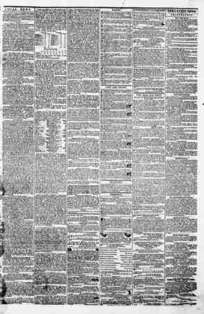 "w??? LOCAL NEWS. ' , .... |?7*"" Tbonjjb Tun ST** to printed ?n the flnteat W:u prrea In asp acuta ?f Baltimore, tti edition"