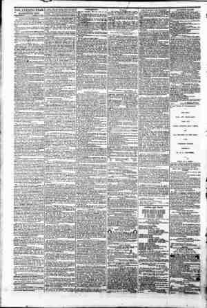 """THE EVENING STAR. """" WASHINGTON CITY: \TEH1E8DAY Jtaur; 18,1961. %*irii mi th? Y1 a ml mm frets fThe !? fearfully perturbed In"""