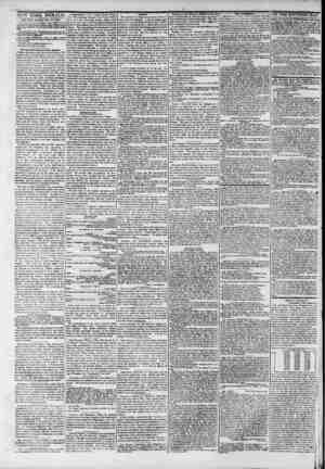 Ni.W YOKk HERALD. I*rw York. Friday, July 14, 1843. Saaaroea Sramaa.?Our reader* will pleaae bear in mind (hut iht- Hi'iitM