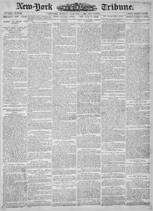 New York Tribune Gazetesi 1 Ocak 1900 kapağı