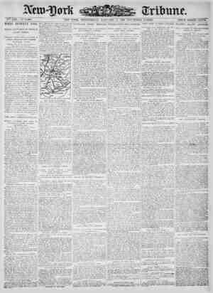 New York Tribune Gazetesi 3 Ocak 1900 kapağı