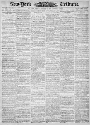New York Tribune Gazetesi 5 Ocak 1900 kapağı