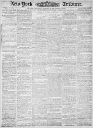 New York Tribune Gazetesi 10 Ocak 1900 kapağı