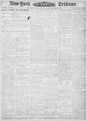 New York Tribune Gazetesi 12 Ocak 1900 kapağı