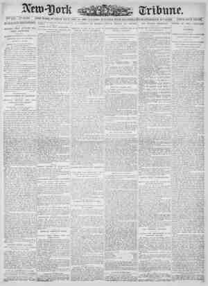New York Tribune Gazetesi 14 Ocak 1900 kapağı