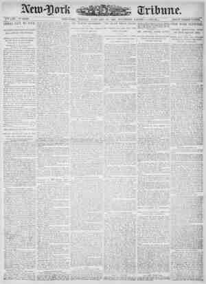 New York Tribune Gazetesi 19 Ocak 1900 kapağı