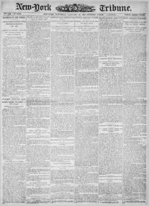 New York Tribune Gazetesi 20 Ocak 1900 kapağı