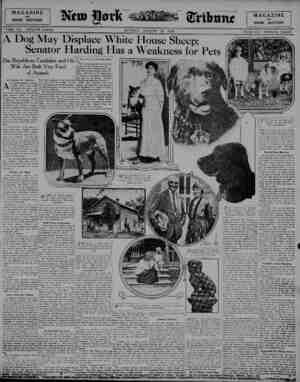 MAGAZINE and BOOK SECTION PART VII TWELVE PAGES Wx?btmt MAGAZINE and BOOK SECTION SUNDAY, AUGUST 29, 1920 PART VII TWELVE...