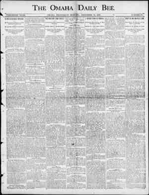 THE OMAHA DAILY BEE TWENTIETH. YEAR. OMAHA , WEDNESDAY JMORNESfG , DEOEMBEK 10 , 1890. NUMBER 175. IJo Will Guide the...