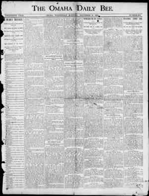 \ THE OMAHA DAILY BEE TWENTIETH YEAH. OMAHA , WEDNESDAY MORNING , DECEMBER 31 , 1890 NUMBER 100. I DEMY TRIANGLE. Ono Hundred