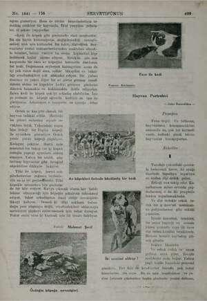 No. 1841 — 156 SERVETİFÜNUN 409 tığını gösteriyor. Hem de bütün bemeinslerinin be dehhüş ettikleri bir hayvanla. İkisi...