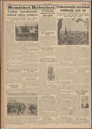 am İ ; | | İ | b | i 10 Sayfa #ON POSTA © Birinciteşrin 29 (Memleket Haberleri) Çukurovada portakal | Kızılcahamamda...