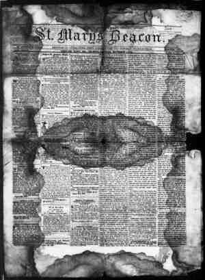 St. Mary's Beacon Gazetesi 1 Aralık 1853 kapağı