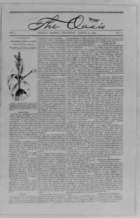 The Oasis Gazetesi 17 Ağustos 1893 kapağı
