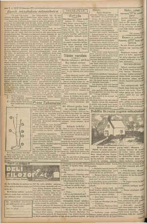 ——) — AKIT 14 Kânunsanı 1931 Bacak müsabakası münasibetite (Üst tarafı 1 inci sayfada) ları bütün kitapları bile. Biz şap...