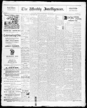 The Weekly Intelligencer Gazetesi 25 Temmuz 1891 kapağı